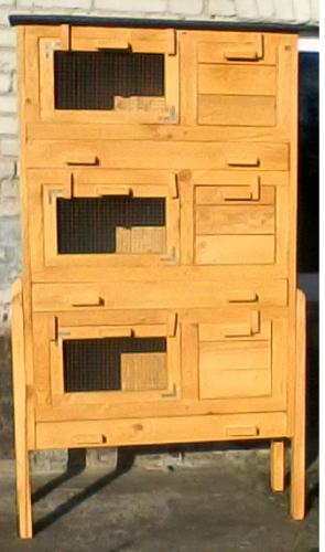 Zygfryd80-2 1